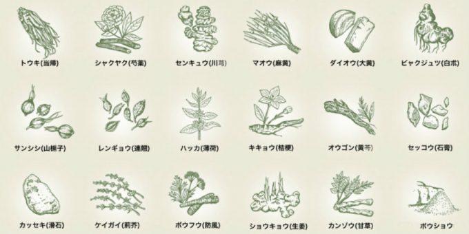 防風通聖散は、交感神経に働きかけるマオウや、脂肪代謝経路に働くカンゾウ・ケイガイ・レンギョウ、溜まった老廃物の排泄に働くダイオウなど、18種類の生薬からなる漢方薬