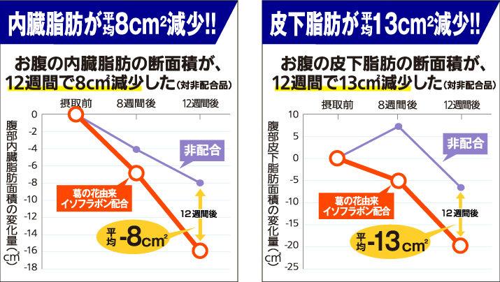 お腹の脂肪(内蔵脂肪と皮下脂肪)の減少量 内蔵脂肪が平均8㎠減少!! 皮下脂肪が平均13㎠減少!!
